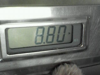 200802101142001