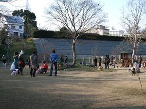 2010_12260023a