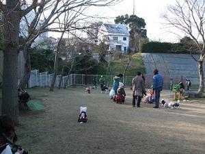 2010_12260025b